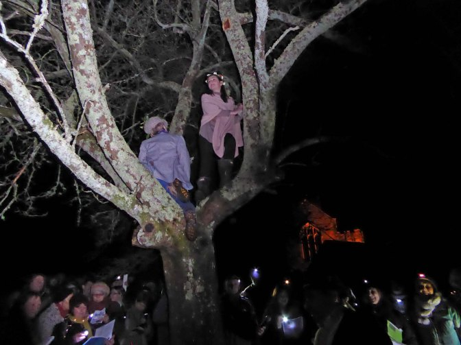 Kings, Queens, apple trees and shotguns – a Wassail Tale