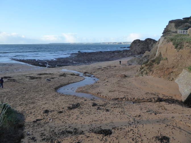 A Saturday afternoon beach clean – hope for the future at Hope Cove