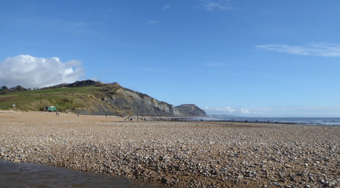 The sweet retired bay at Charmouth – now polluted by black and blue plastic pellets