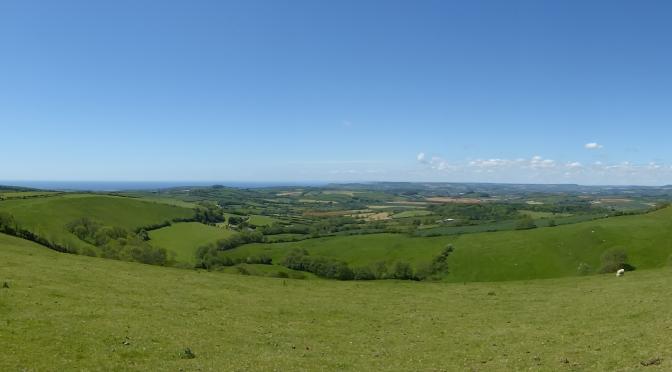 West Dorset surprises